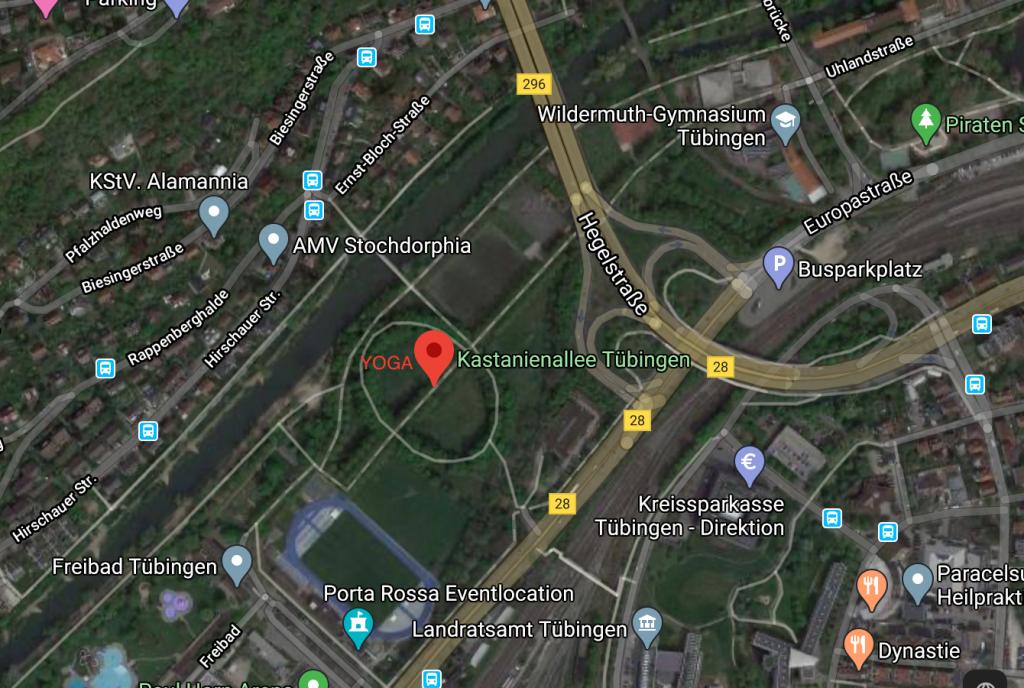 Yoga im Park. Anmeldung am Vorabend. Treffpunkt Kastanienallee Tübingen